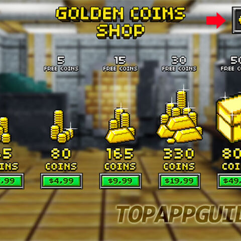 The look of the coins shop before the 9.0.0 update.