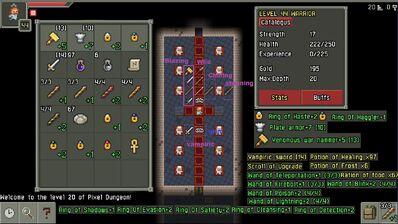 Pixel dungeon last update caracter