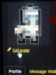 Edit Avatar