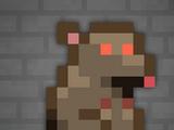 Marsupial rat