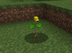 325px-Bellsprout norm
