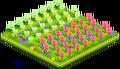 Tulip Field 1.png