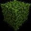 Block AppleFoliage