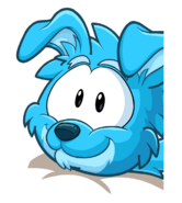 Dogwoof2