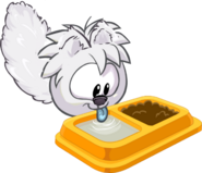 Arctic Fox Puffle Drink