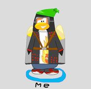 My penguin made from scratch