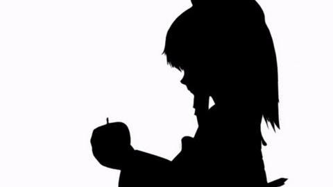 Bad Apple!! - Full Version w video Lyrics in Romaji, Translation in English-0