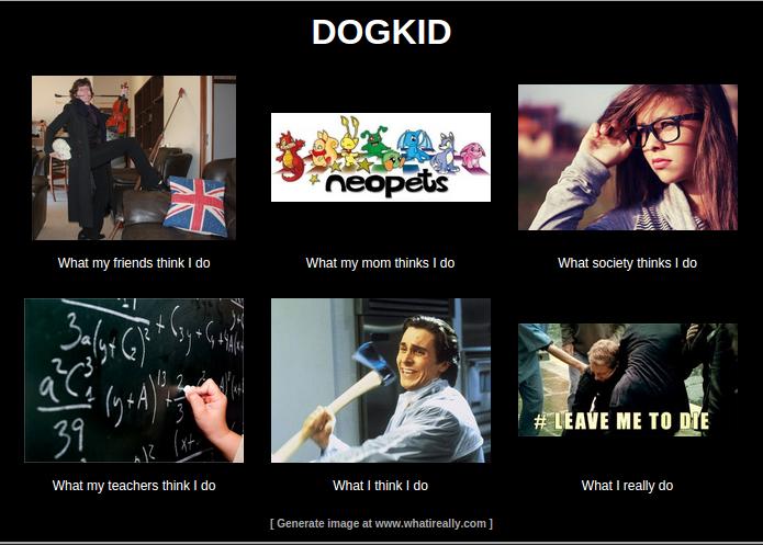 Image What I Really Do Meme Generatorg Pixies Secret Agency