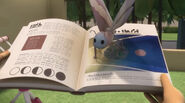 A moth shows the eclipse on Amaya's book