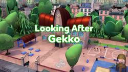 Looking After Gekko Card