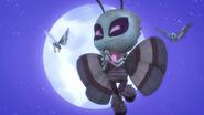 Motsuki with two luna moths