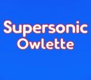 Supersonic Owlette/Gallery