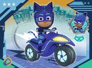 Catboy on PJ Rovers