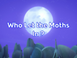 Who Let the Moths In?