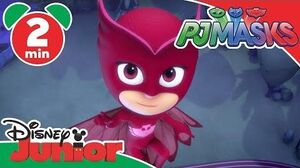 PJ Masks Owlette's Sticky Wings! Disney Junior UK