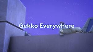 Gekko Everywhere title card