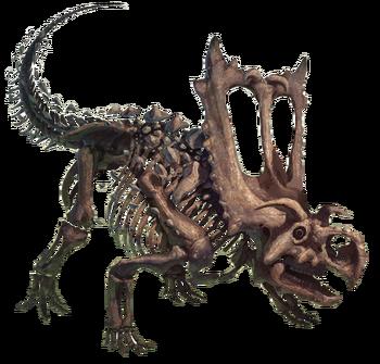 Fossile Bastiodon reale
