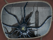 CGI Morbuzakh