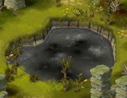 Proto-pool