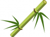 100px-Bamboo