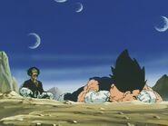 Kiedy Gokū zabija Majin Bū, Vegeta mdleje od ulgi oraz w wyniku odniesionych ran