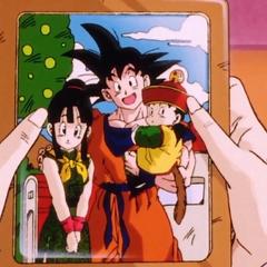 Gokū na zdjęciu rodzinnym