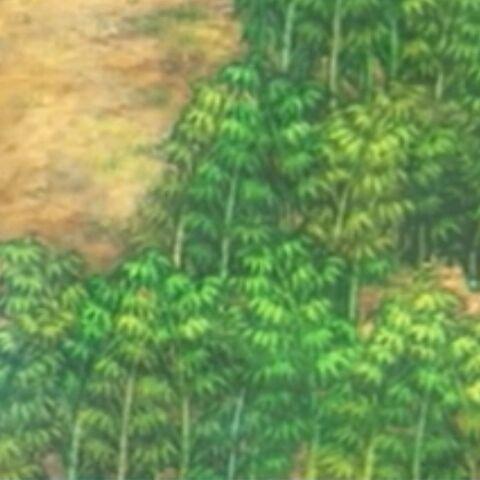 Las Bambusowy 02 (Dragon Ball Kai: Saiyajin raishū)