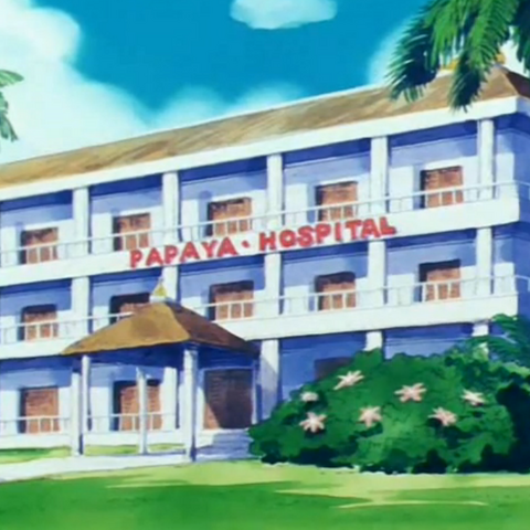 Szpital na Papayi