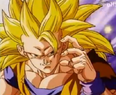 Goku SJS3
