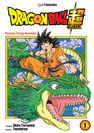 Pierwszy tom mangi DBS, okładka JPF