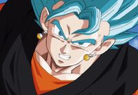 Vegetto (12) (SDBH, odc. 003)