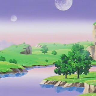 Krajobraz – widoczna flora