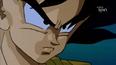 Goku5