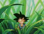 Goku na Mommāsu (DBGT, odc. 005)