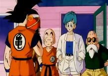 Goku przybywa