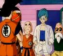 Dragon Ball Z 002 Najsilniejszym wojownikiem w historii okazuje się być starszy brat Gokū!