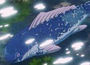 Wielka ryba (DBGT, odc. 006)
