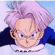 Future trunks 8