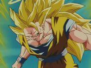 Goku SSJ Three (12)