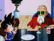 Goku i kamesenin2