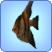 AngelfishTS3