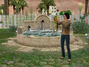 Sims3-lucky-palms-wunschbrunnen