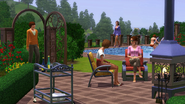 TS3IWP Screen 6