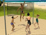 Volleyball ts1