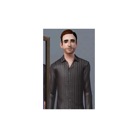 Ben Bell jako Sim