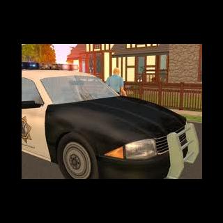 Policja pędzi na sygnale