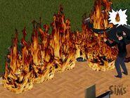 Pożarts1