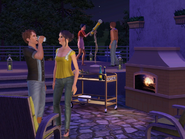 TS3IWP Screen 2