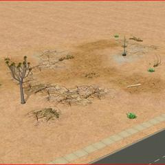 Wykopaliska w Gilroy