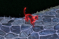 Cat ghost in The Sims 3